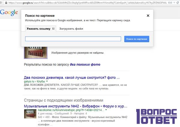 Гугл поиск похожих фото