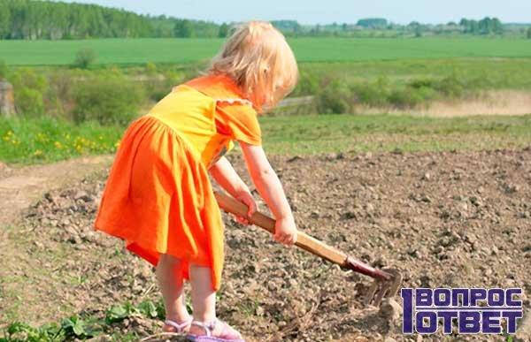 С какого возраста можно работать детям?