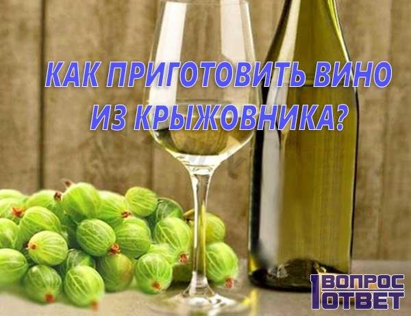 Как приготовить вино из крыжовника в домашних условиях?