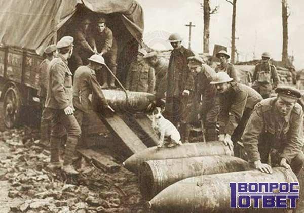 Военные грузят снаряды