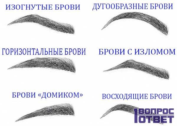 6 типов бровей