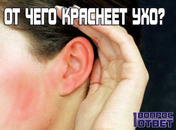 К чему горят уши у человека?