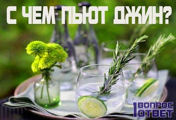 С чем сочетается джин?