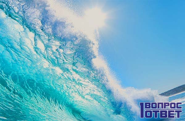 Море и его состав