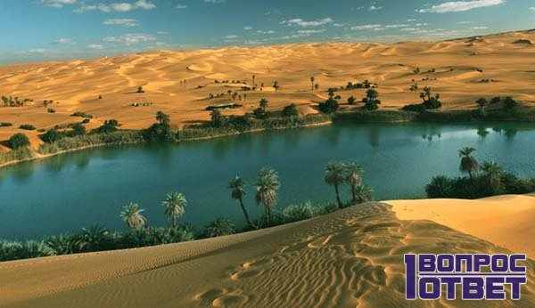Настоящий пустынный оазис