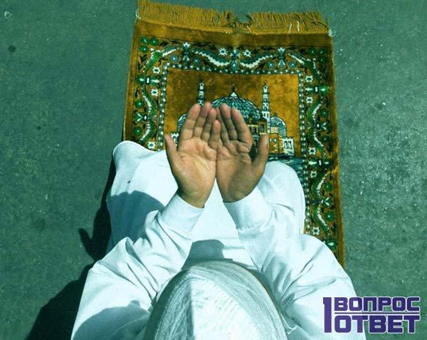 Во что верят сунниты