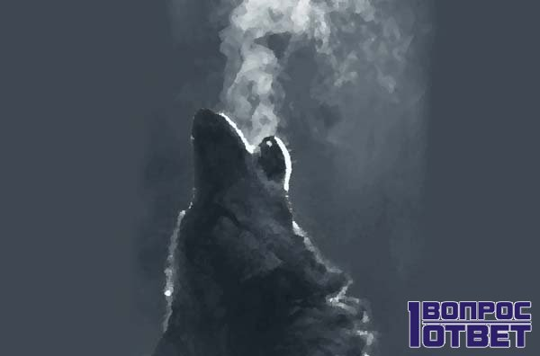 Собака издает протяжный вой