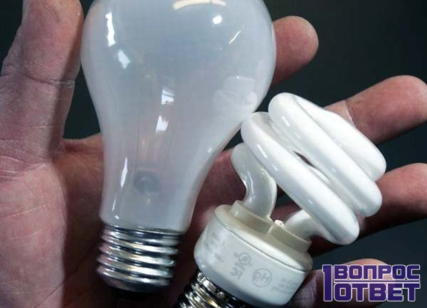 Энергосберегающая и светодиодная лампа в руках