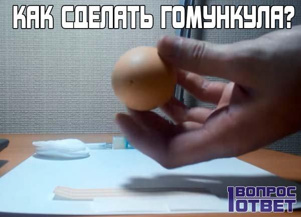 Как сделать гомункула дома