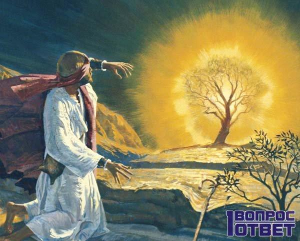 Моисей и горящий куст - отсюда и название