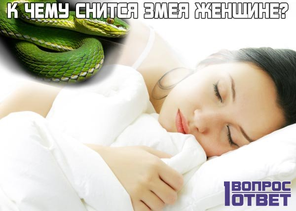 К чему снится змея девушке?