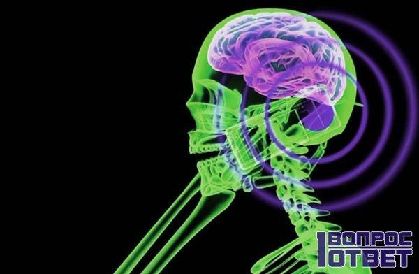 Сотовый излучает волны, действующие на мозг