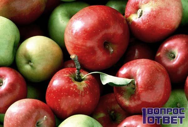 Кушать яблоки перед сном можно