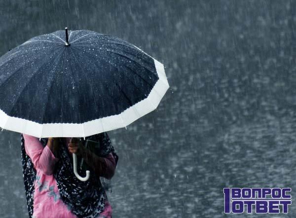 Прячется под зонтом от обложного дождя