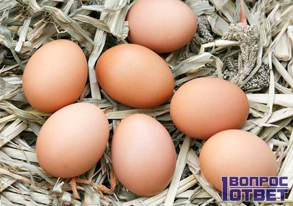 Свежие яйца не из магазина