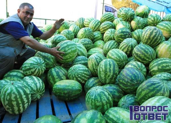 Продавец предлагает сочные плоды