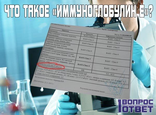 Иммуноглобулин Е общий – что это такое?