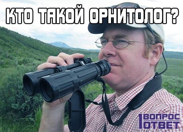 Орнитолог: кто это такой?