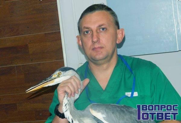 Услуги ветеринара-орнитолога