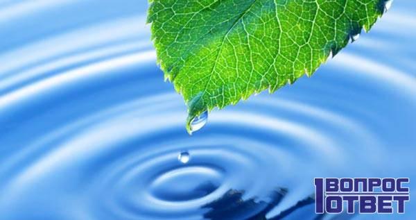 Вода - важный ресурс