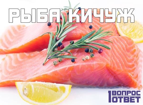 Что за рыба кичуж?