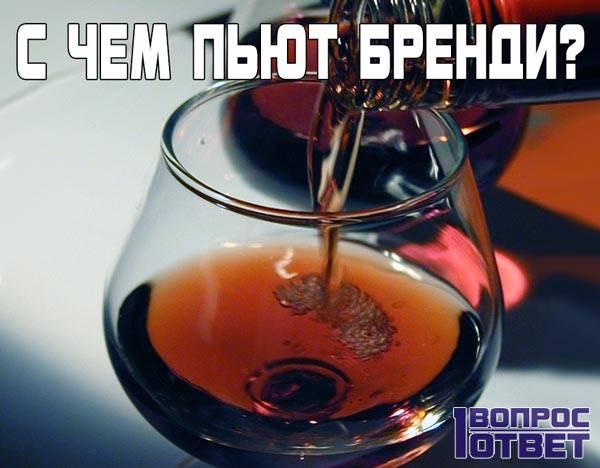 С чем можно пить бренди?