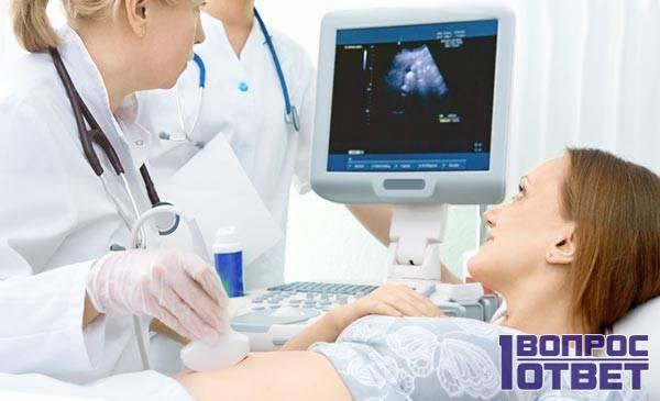 Ультразвуковое обследование беременной
