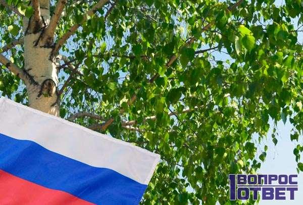 Символ России - дерево