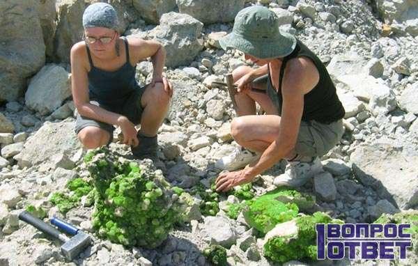 Откопали агатовое месторождение