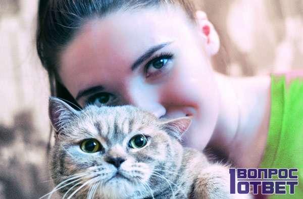 Кошка и ее странная хозяйка