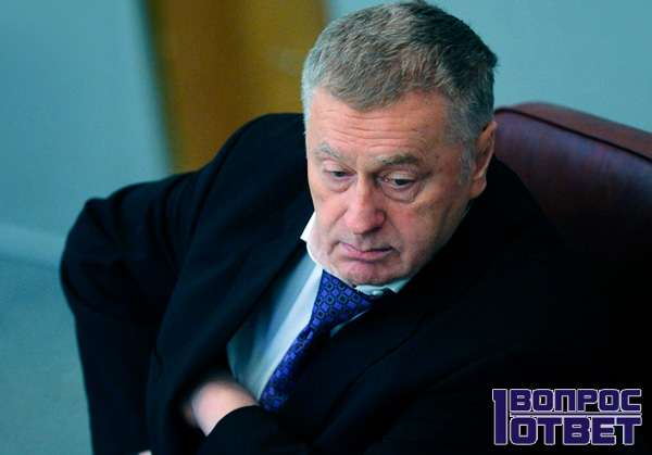 Владимир Вольфович в политике