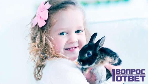 Крольчонок и маленькая девочка