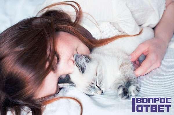 Котенок у девушки - милота