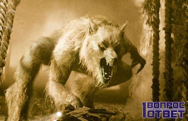 Человек-волк со сверхвозможностями