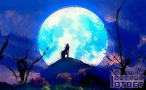Круглый диск луны