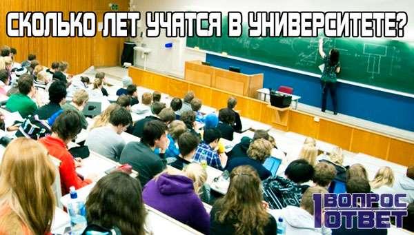 Сколько лет учатся в университете?