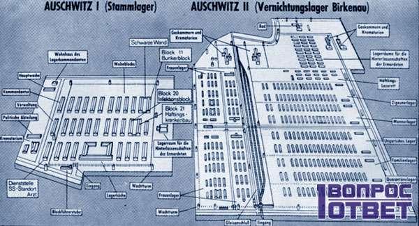 Структура лагеря по блокам