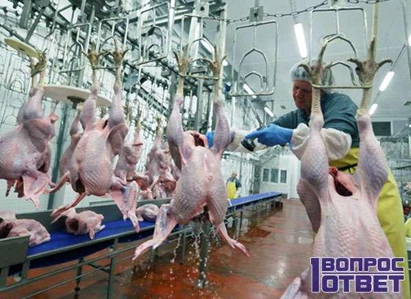 Подготовка к упаковке мяса