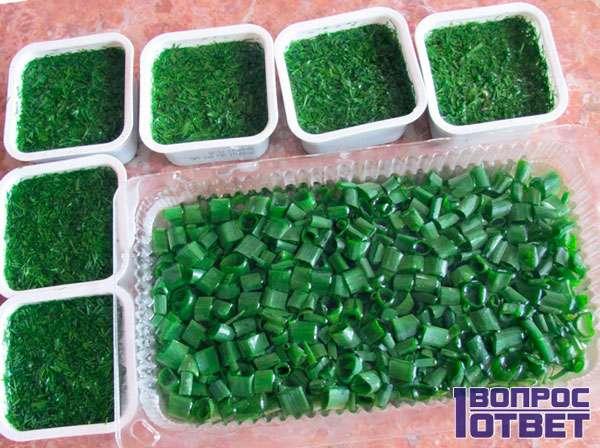 Зеленый лук лучше заморозке не подвергать